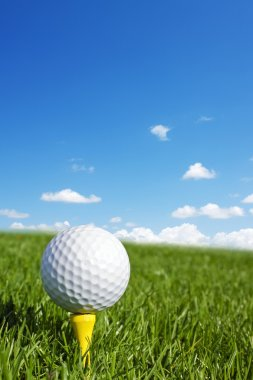 Golf ball vertical