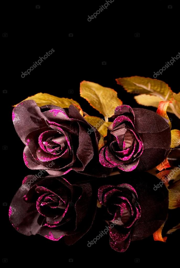 Rose Nere Foto Stock Jerryb7 14565105