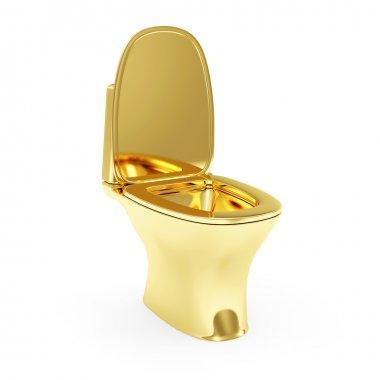 Golden Toilet isolated