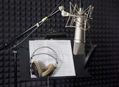 Photo Condenser microphone in vocal recording room