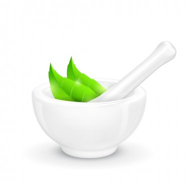 Mortar and Pestle with Herb