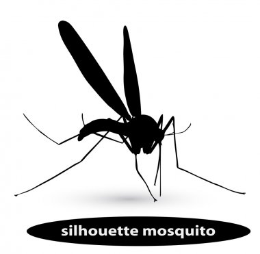 Silhouette mosquito