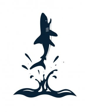 Shark in waves