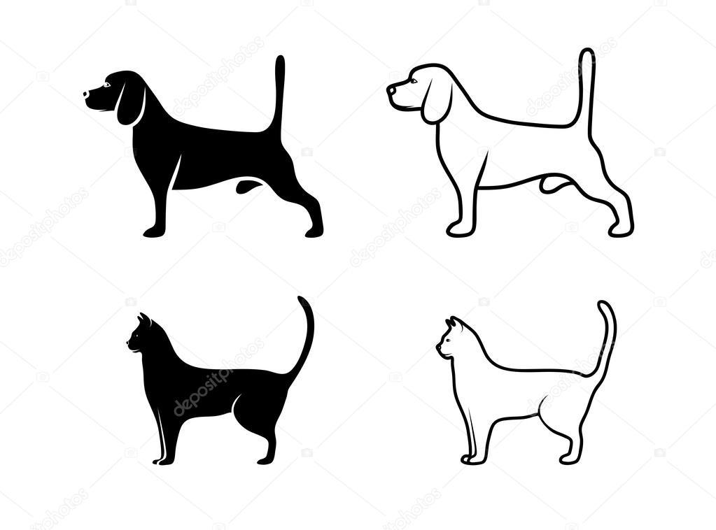 Gato Y Perro Blanco Y Negro