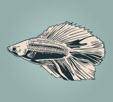 Vector vintage fish