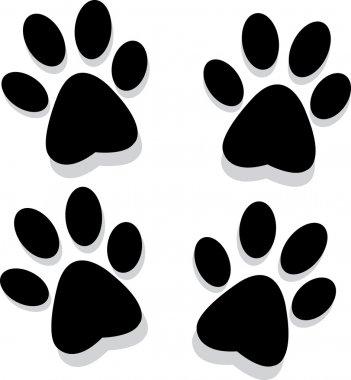 Paws prints