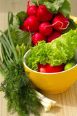 pomodori, cetrioli e spinaci freschi