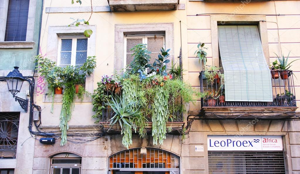 Balcony with pots in the district of La Ribera, Barcelona