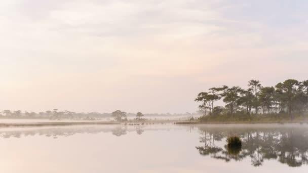 ranní mlha na jezeře v národním parku, Thajsko
