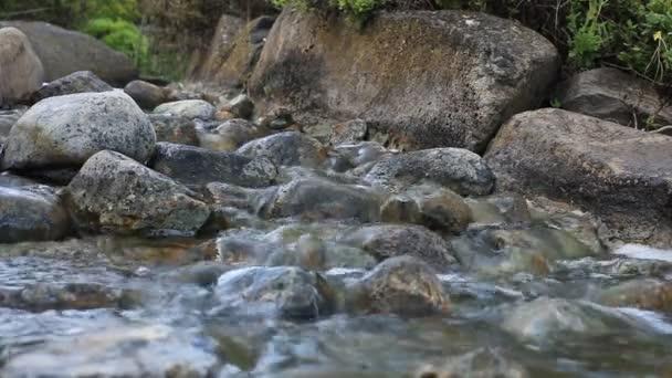 kis folyó
