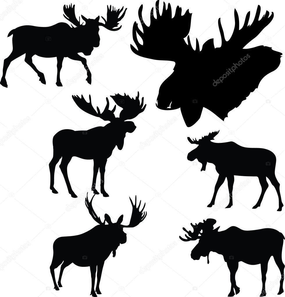 moose silhouette stock vectors royalty free moose silhouette  - moose silhouettes royalty free stock vectors