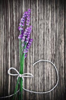 Lavender flower on wooden background