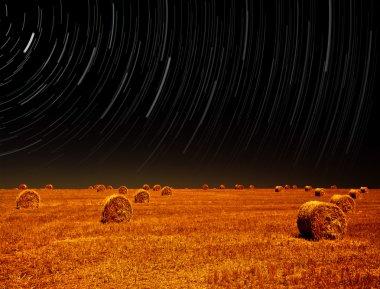 Night landscape of farm field