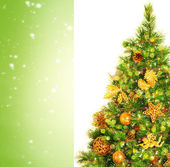 Fotografie krásný vánoční strom