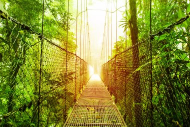 Arenal Hanging Bridges park of Costa Rica