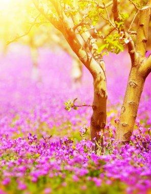 Sunny fruit tree garden