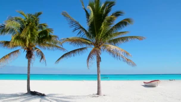 Caribbean Tulum white sand beach with two palm trees and beached boat like paradise near Cancun