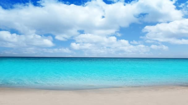 Idyllic tropical turquoise beach in caribbean sea with white sand shore beautiful