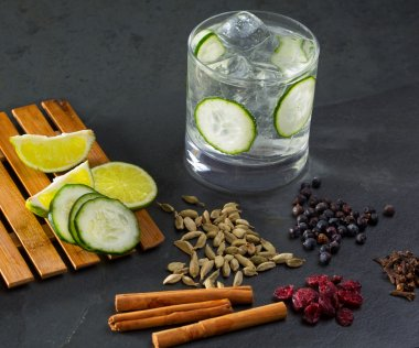 Gin tonic cocktail with cucumber cloves cardamom cinnamon and ju