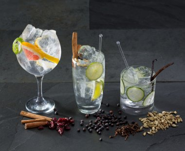 Gin tonic cocktails with lima cucumber and grapefruit
