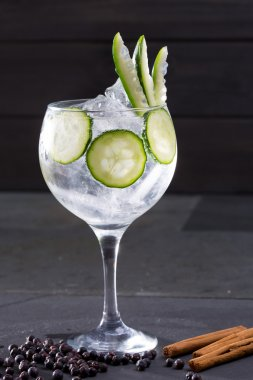 Gin tonic cocktail with cucumber and cinnamon and juniper