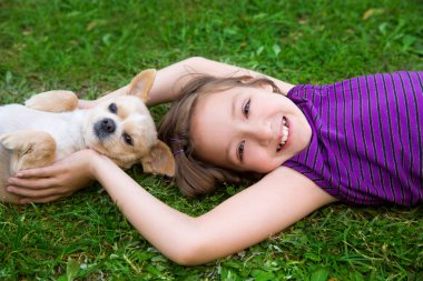 Children kid girl playing with puppy dog chihuahua