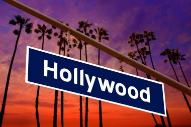 Hollywood California road sign on redlight with pam trees photo