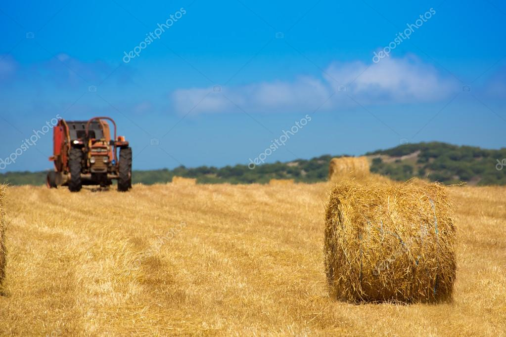 Menorca combine tractor wheat with round bales