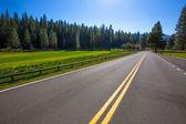 percorso stradale di Yosemite wawona 41 in california