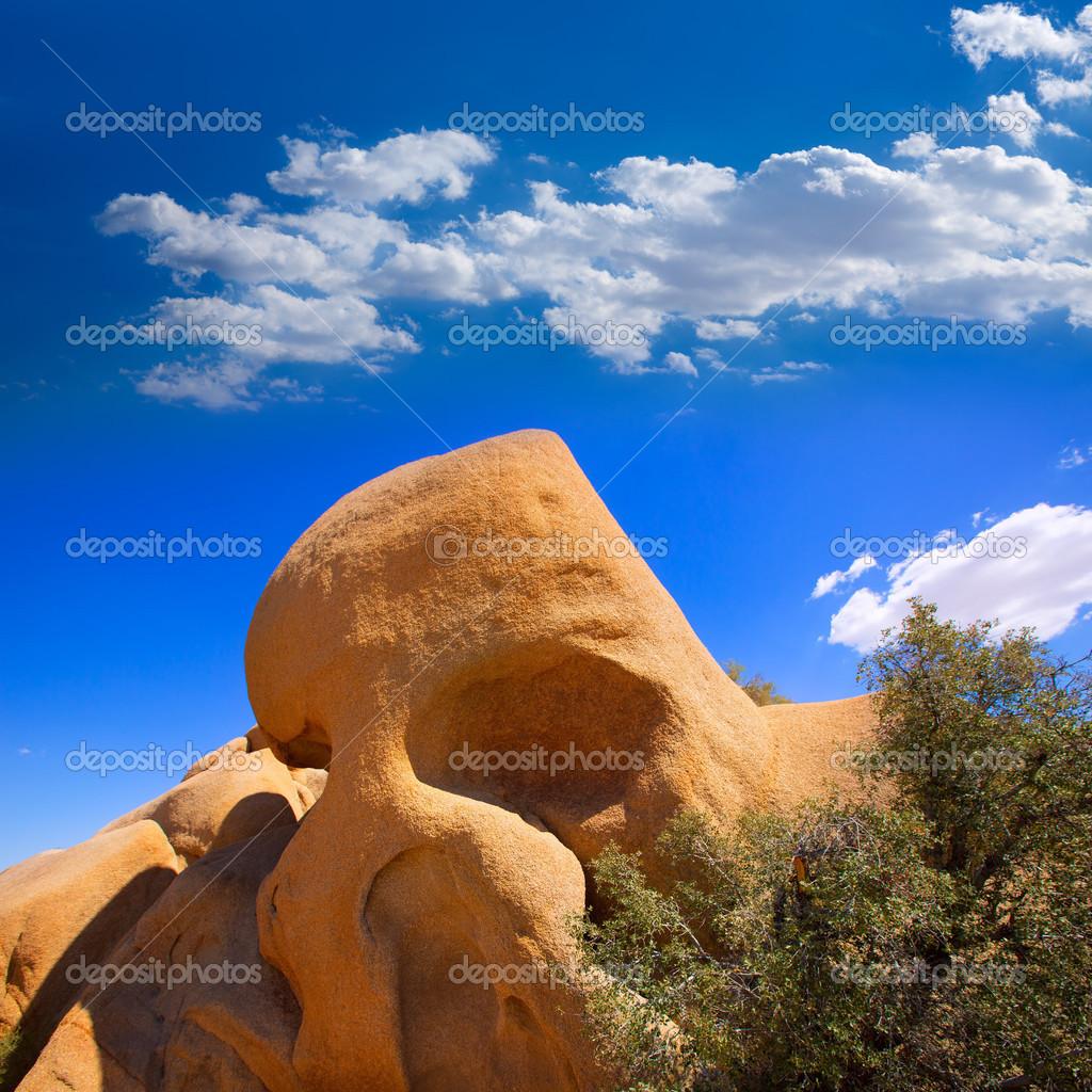 Skull rock in Joshua tree National Park Mohave California