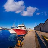 Fotografia Gandia porto puerto valencia in Spagna mediterranea