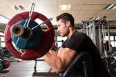 biceps lavice arm curl cvičení kazatel v tělocvičně