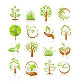 Fotografie Reihe von Natursymbolen