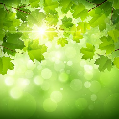 "Картина, постер, плакат, фотообои ""естественный зеленый фон "", артикул 40160207"