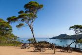 Fotografie Porquerolles Insel in Frankreich