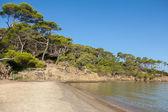 Fotografie Notre-Dame-Strand in Porquerolles Insel in Frankreich