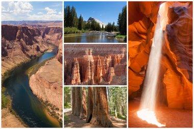 USA west coast national parks landscape collage