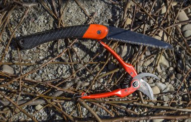 shears and saws