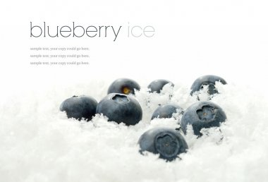 Blueberries in ice