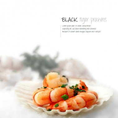 Black Tiger Prawns 3