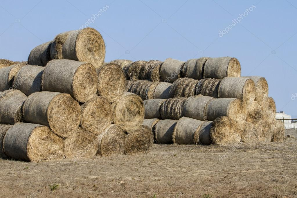 View of a stack of hay bales