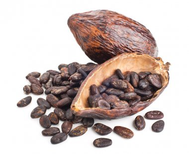 cocoa pod and beans isolated on a white