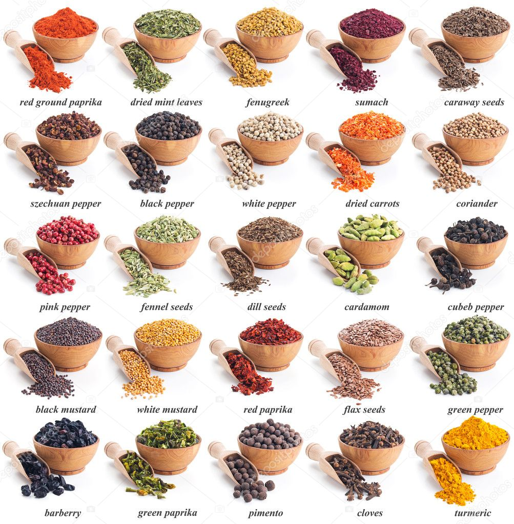 collection of different spices and herbs