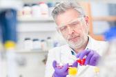 Leben-Wissenschaftler forschen im Labor