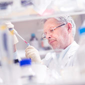 Fotografie Life scientist researching in the laboratory.