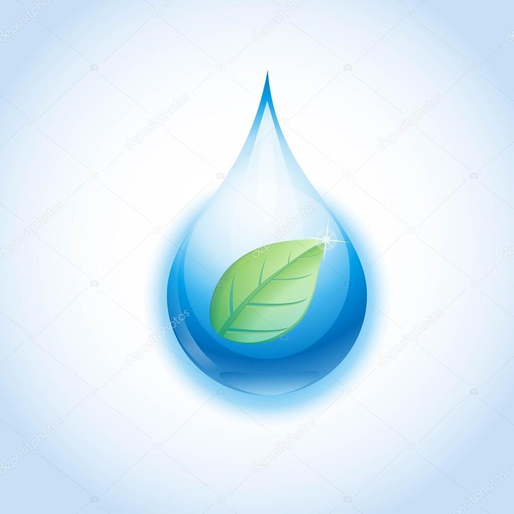 Vector leaf in water drop