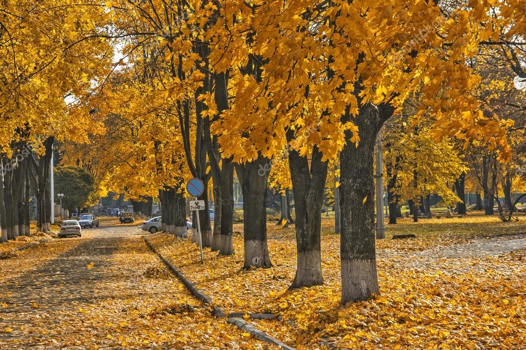 Пугачёва осторожно, листопад минус осторожно листопад скачать песню.