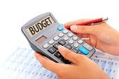 concetto di budget.