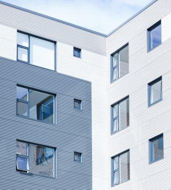 Basic Window