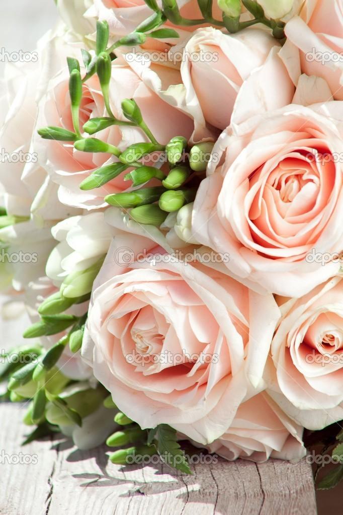 brautstrau wei e freesien und rosa rosen stockfoto tanitue 22309493. Black Bedroom Furniture Sets. Home Design Ideas